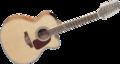 12-snarige-gitaar