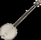 Washburn-B7-Heritage-open-back-banjo-5-snarig