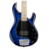 Sterling by Musicman Ray35 Quilted Maple, 5-snarige basgitaar_6