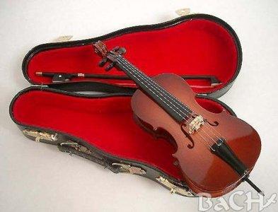 Miniatuur Cello met koffer