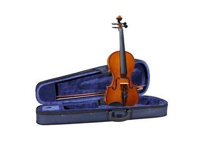 Leonardo viool 3/4 of 4/4 basic, compleet met koffer, strijkstok e.d.