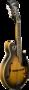 Washburn-F-Style-Mandoline-pakket-sunburst-electro-akoestisch