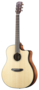Breedlove-Dreadnought-Plus-Persuit-Series-met-gigbag