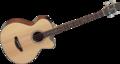 Takamine-GB30CENAT-Electro-akoestische-basgitaar-met-cutaway