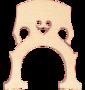Herald-brug-voor-4-4-cello